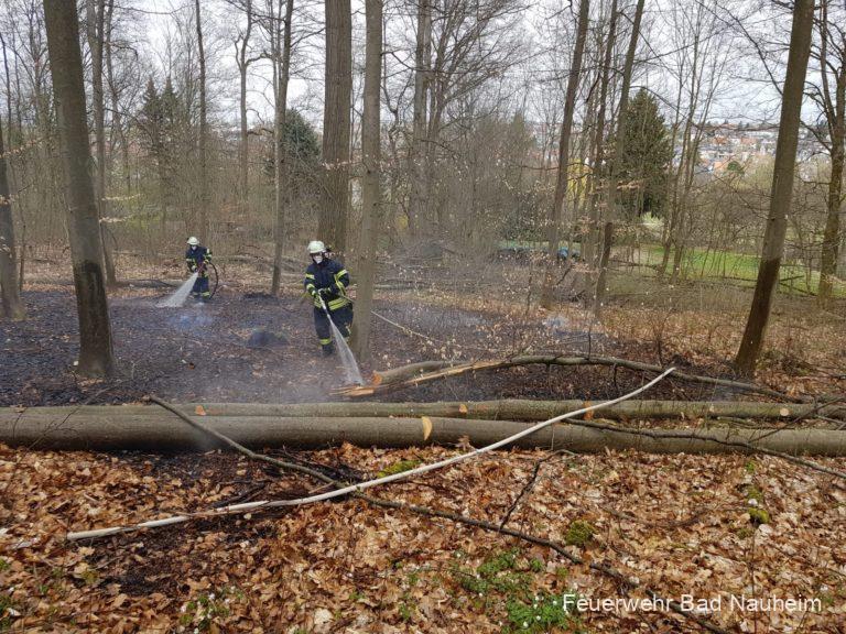 Erster Waldbrand der Saison